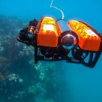 Despite the COVID lockdown you can still dive the Great Barrier Reef – virtually