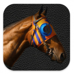 New iPhone app perfect for once a year Melbourne Cup punters